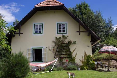 Altes Bauernhaus im Grünen - Puchegg - Dům