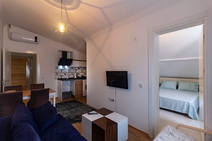 2 BEDROOMS APARTMENT (LOFT)