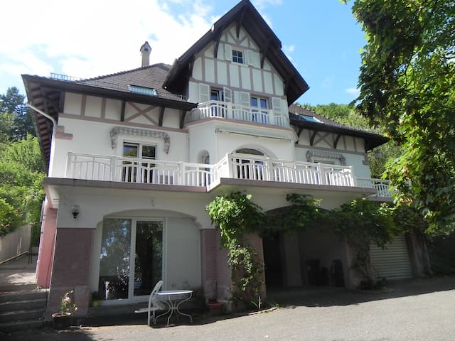 chambre d'hotes dans villa de caractere THANN - Thann