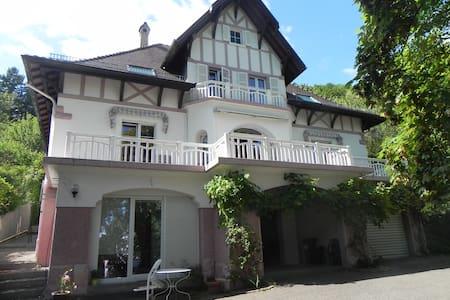 chambre d'hotes dans villa de caractere THANN - Thann - Gæstehus