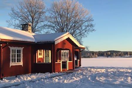 Vintersemester WRC Rally Sweden