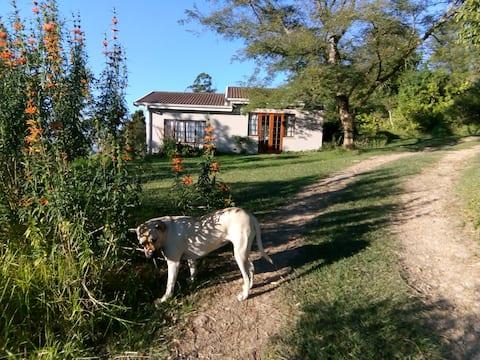 Aloe Hill Cottage