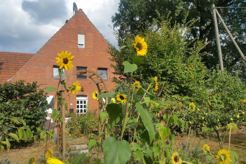 Hausansicht außen Gartenseite Natur in Ruhrgebietsnähe
