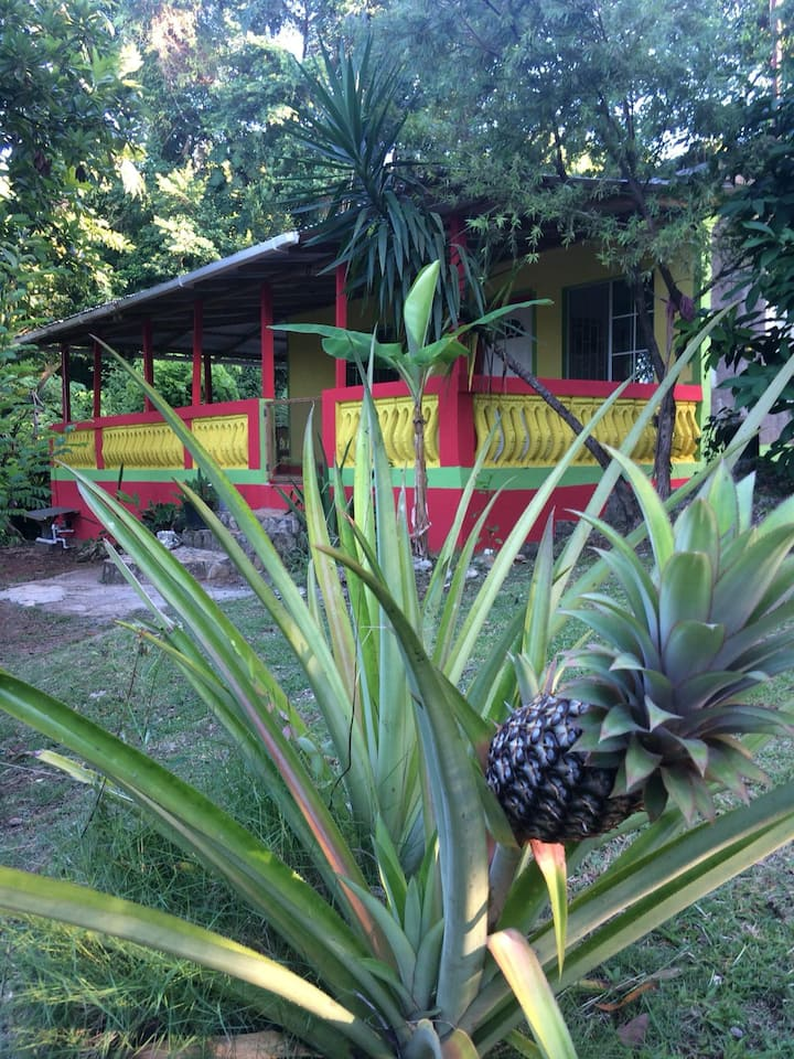 Breadfruit Villa