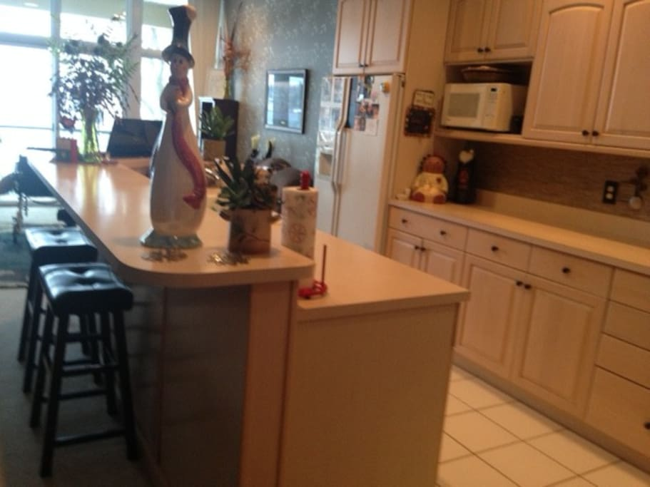 Large Kitchen with snack bar