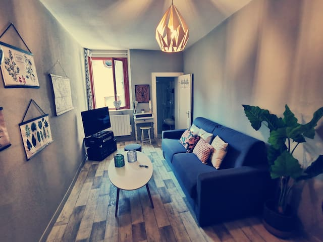 Studio en plein cœur d'Annecy, Puits-St-Jean.