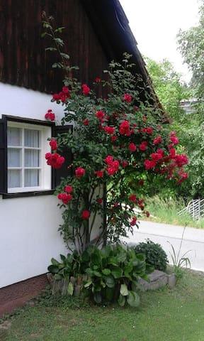 Ferienhaus in der Steirischen Toskana - Deutschlandsberg - Dom