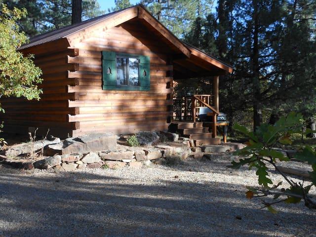 La Plata Mountains Bunkhouse/Cabin