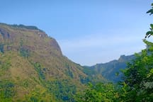 Ella forest mountains view