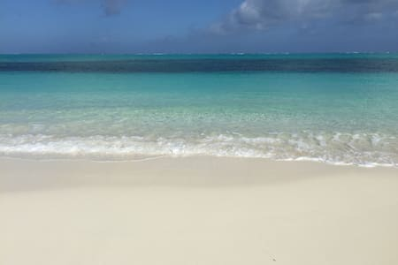 HiddenTreasure in Paradise,TurtleCove Provenciales