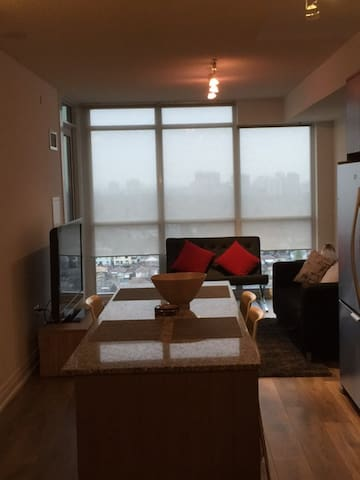 Brand spanking new 2 bedroom apartment in Toronto. - Toronto - Departamento