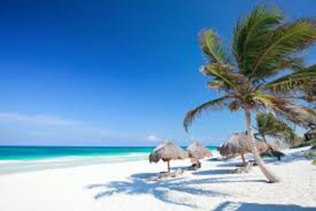 Great white sand beaches that don't burn your feet!