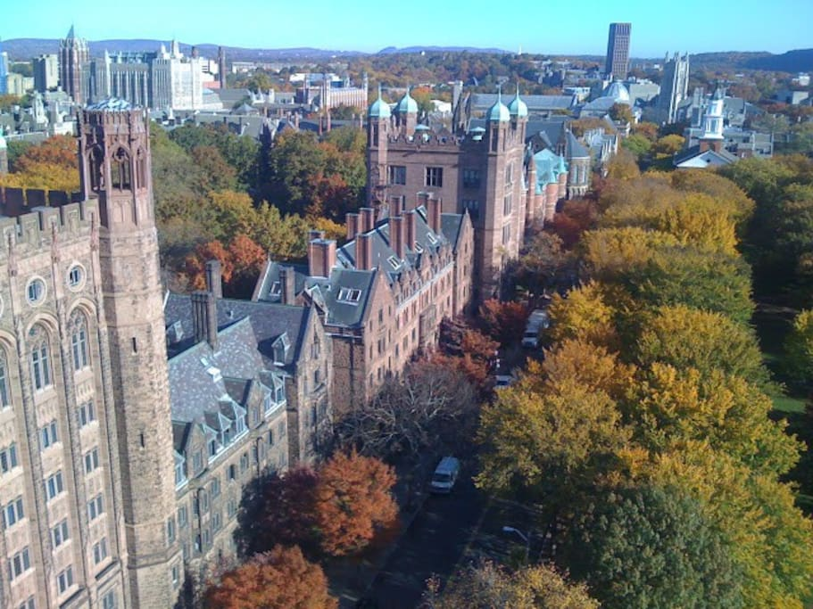 Views of Yale from the living room, in the autumn.