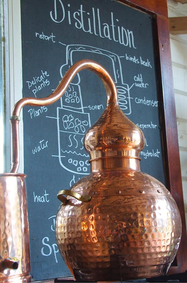 The  small stills used in the masterclass