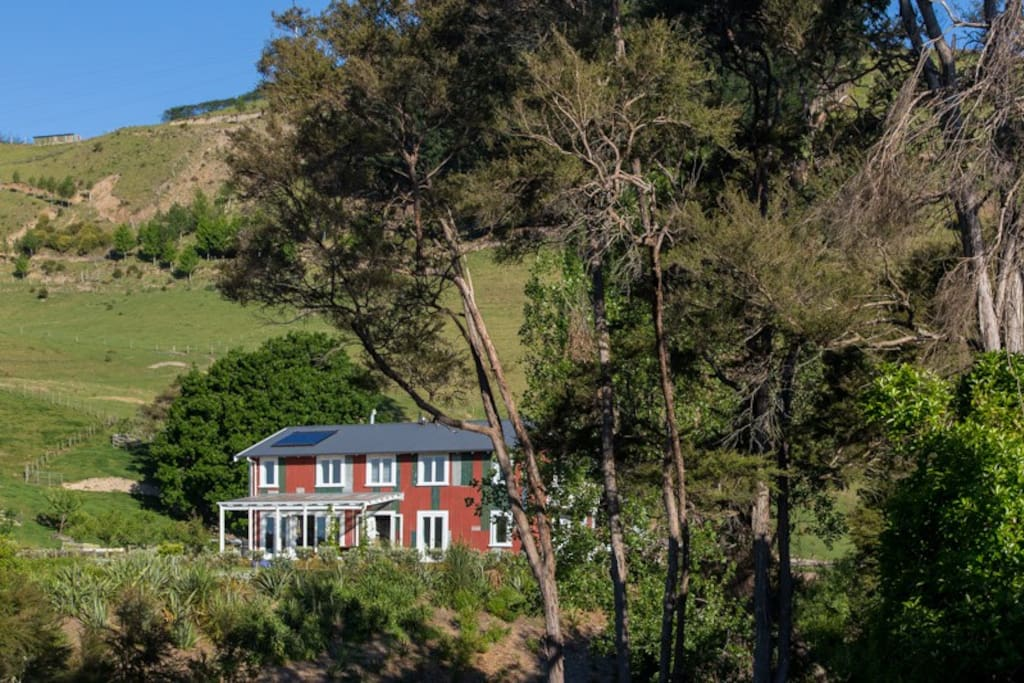 The gorgeous lodge setting. The hills behind the lodge have some great walks we can point you towards.
