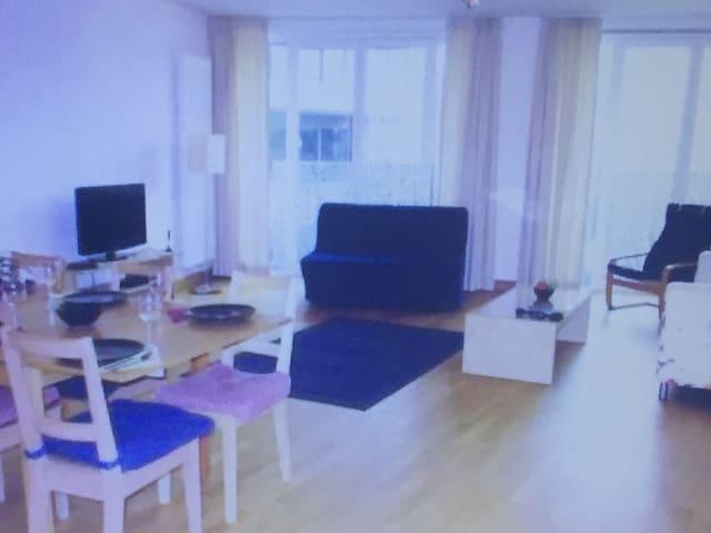 Hefeng hut - 格拉茨 - Apartment