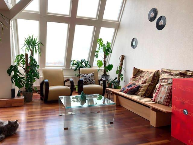 Beautiful Penthouse BIG Room