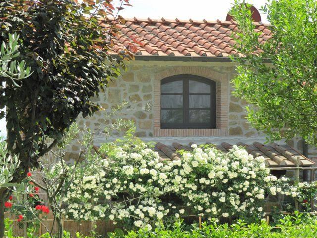 Casa colonica nel cuore della Toscana