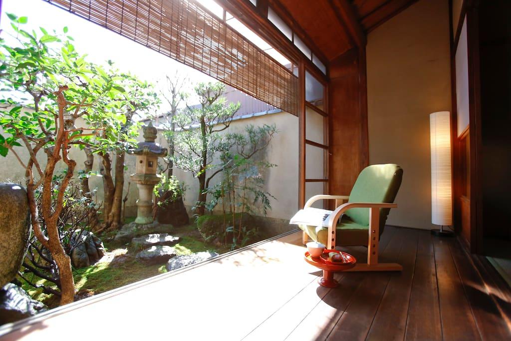 Little garden 中庭