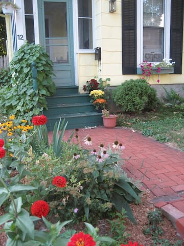 Summer view of the front yard