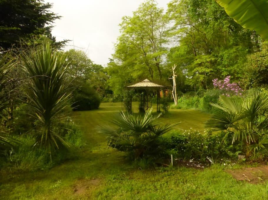 Le Parc avec les Palmiers et la Gloriette.
