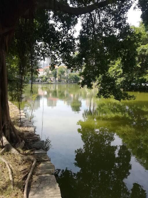 独特的社区花园,园内有流动的河、两个湖