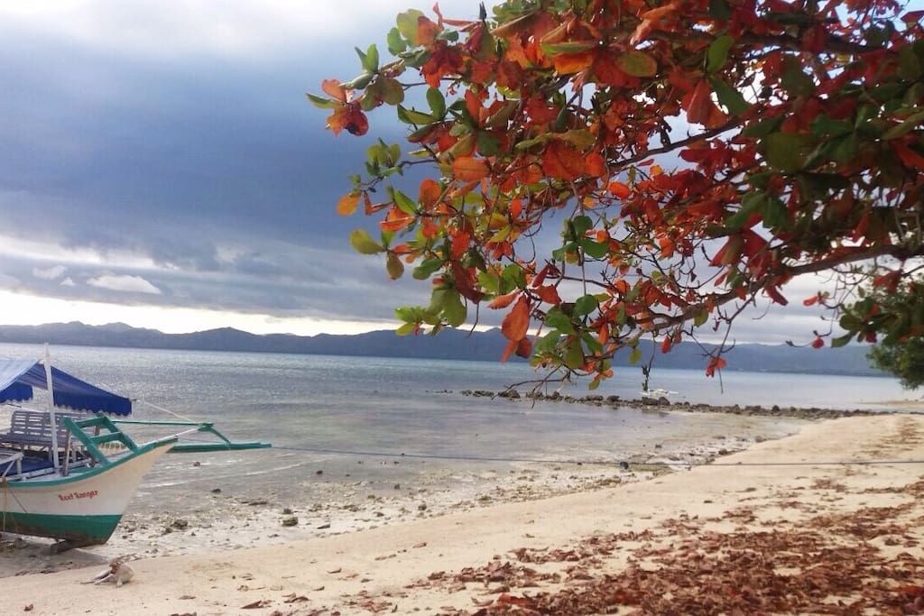 Mangguihay Beach Front Day View