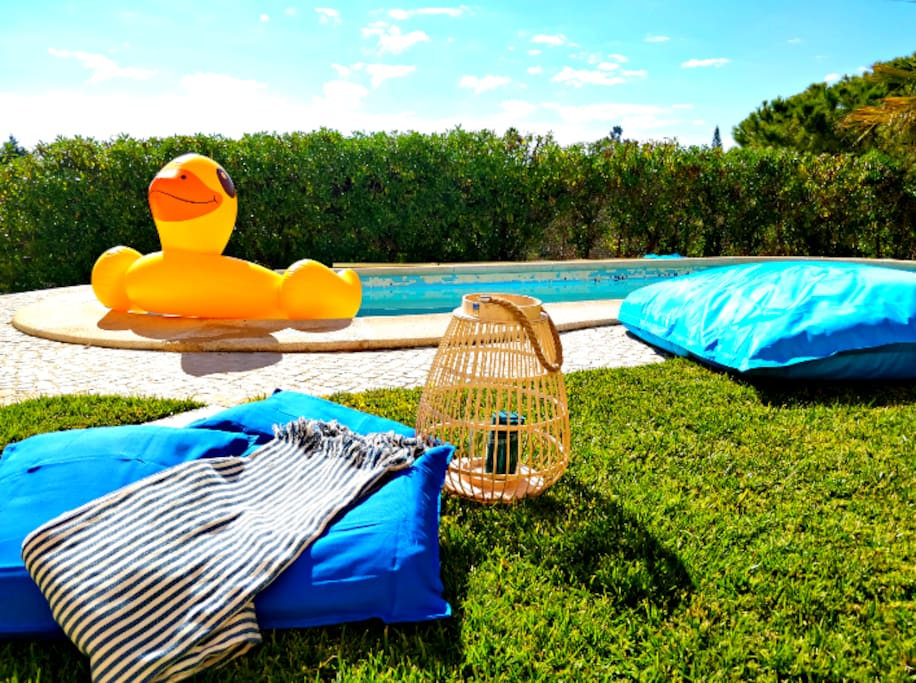The great Mr. Duck is waiting for you to have loads of fun in our private pool!