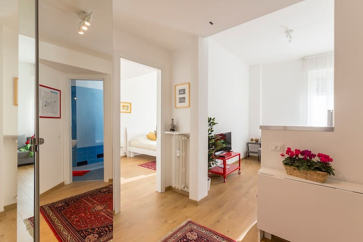 Comfortable two-room apartment in the center