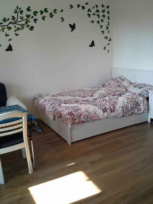 Wohn- und Schlafzimmer- living and bedroom