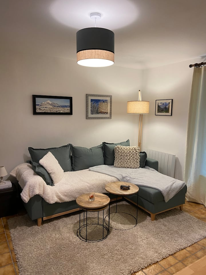 Appartement plein centre des Carroz