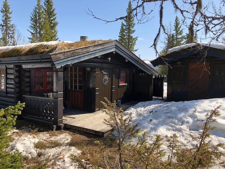 Vår hytta i Grasbekkåsen, Flendalen, Trysil