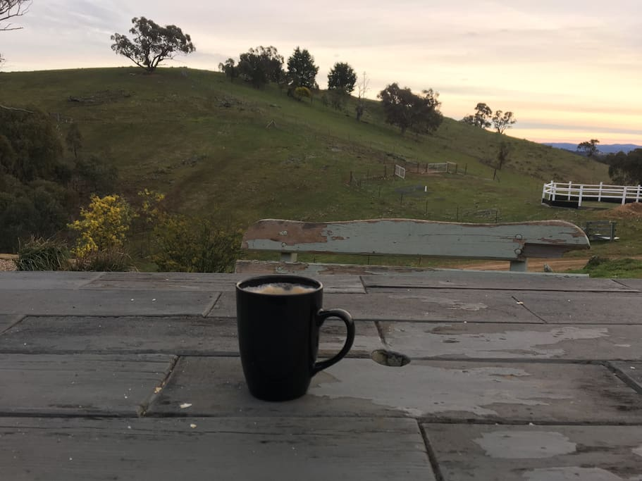 Morning coffee looking over the property