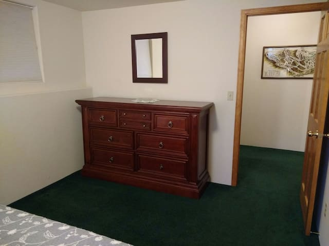 Huge dresser and closet for storage in first room.