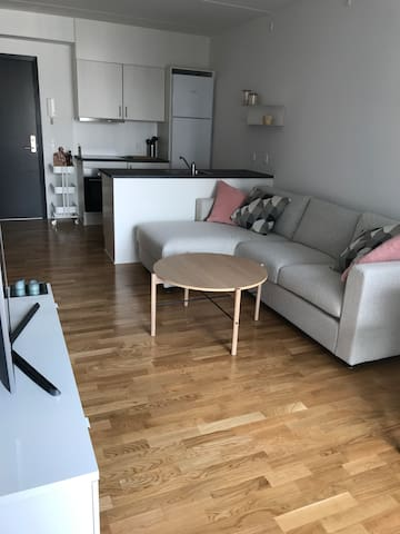 New 2 bed room Apartment in the Heart of Aalborg
