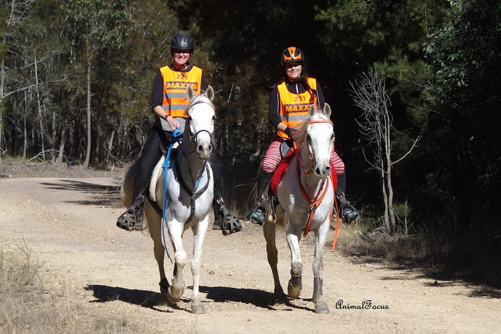 Riding along in the nearby Kiwarrak State Forest.