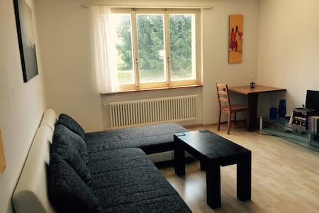 Spazioso divano in living room - Oftringen