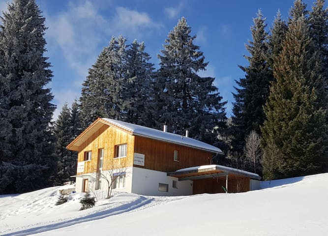 Schönes Chalet in den Bergen 3.5 Zi Hochparterre
