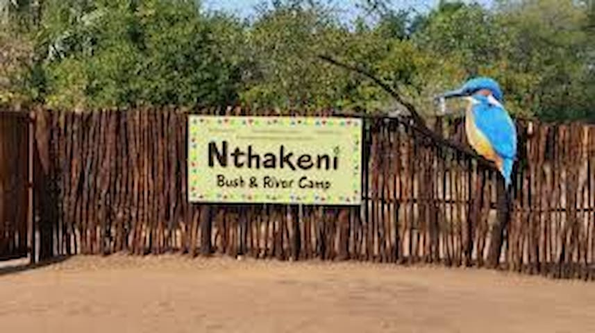 Nthakeni Bush and River Camp Mushato camp stand