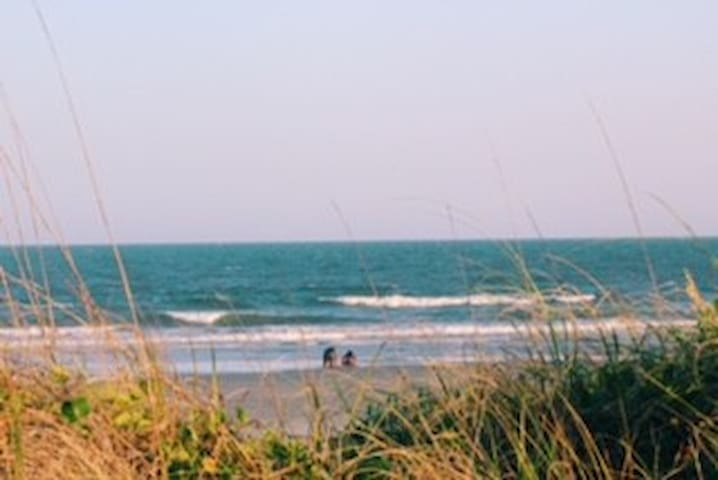 Little Slice of Heaven on beautiful Isle of Palms - Isle of Palms - Apartment