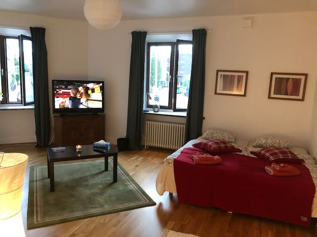 Svingeln residence Apartment 1/Room B