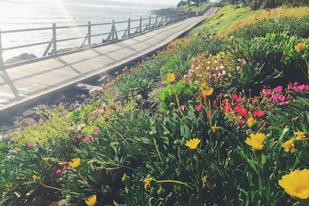 Boardwalk - Absolute Beachfront - Lennox Head