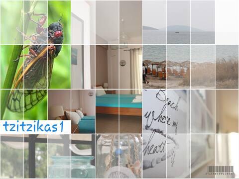 tzitzikas1 apartment