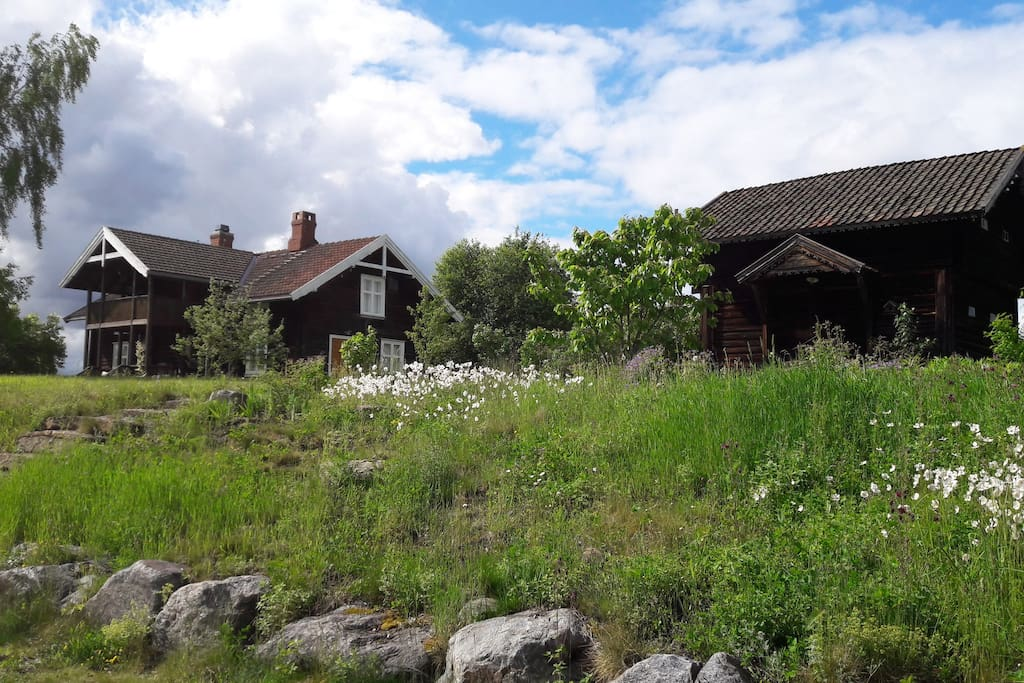 Charming old log house for rent