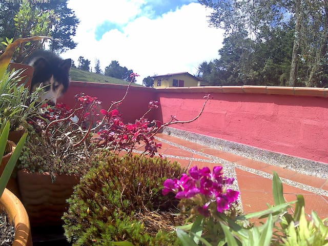 Kamsa Lodge Santa Elena - Privada - เมเดลลิน - บ้าน