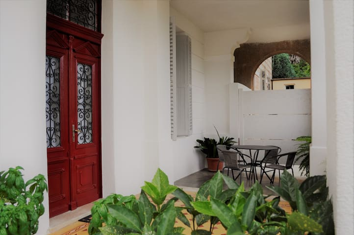 2+2 apt with private roofed terrace