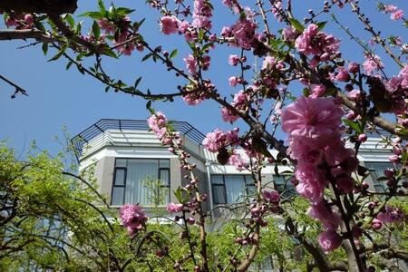 European-style house with garden - Beijing