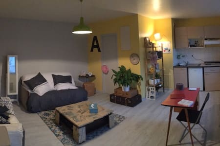 Grand studio lumineux - Nancy - Apartment