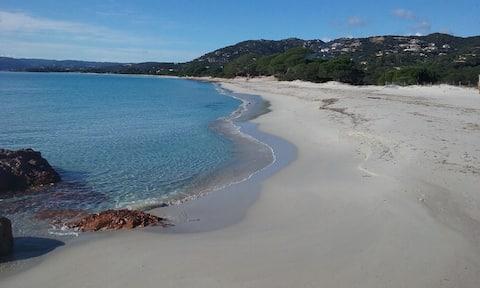 Studio palombaggia 700m de la plage CLIMATISÉ.