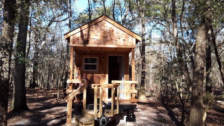 Cabin 8 at Bowman's Landing on the Santa Fe River